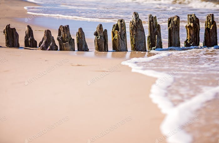 Old wooden breakwaters