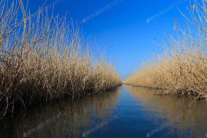Seewasserkanal