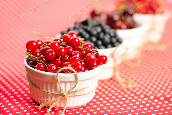 Wild berries in bowls