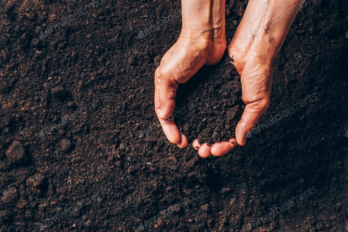 Dirty woman hands holding dark moist soil. Agriculture, organic gardening, planting or ecology