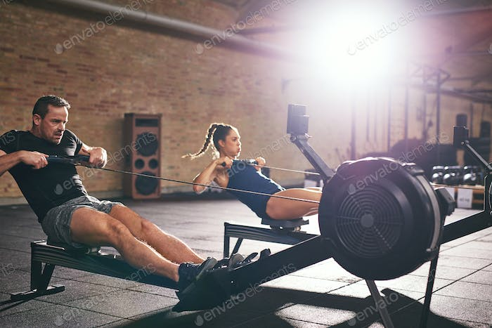 Two people training on rowing machines together