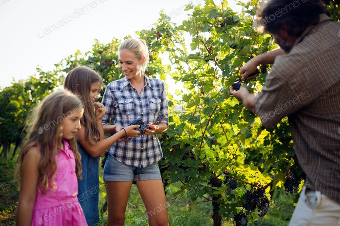 Glückliche Winzer Familie Wandern im Weinberg