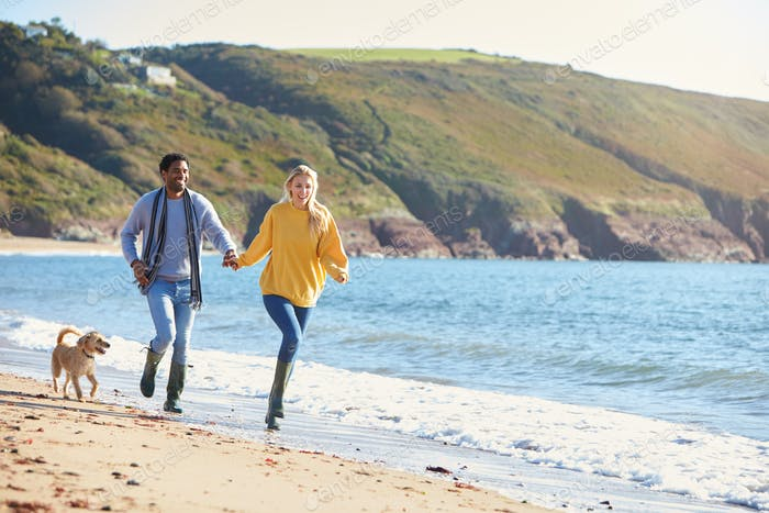 Loving Couple Holding Hands As They Run With Dog Along Shoreline On Winter Beach Vacation