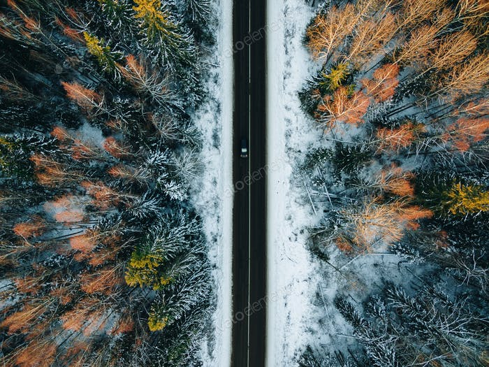 Aerial view of snow covered trees in forest and winter country road with a car