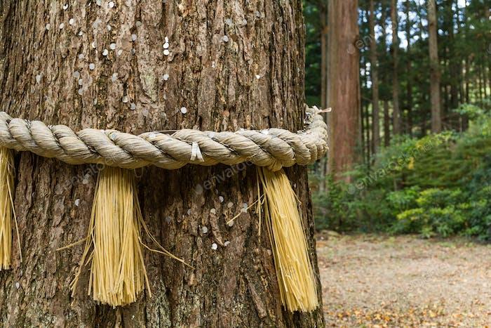 Symbol des japanischen Schreins