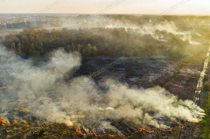 Vista aérea de incendios forestales en el campo. Enormes nubes de humo