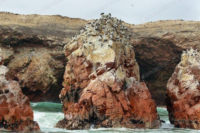 Ballestas islands in Peru