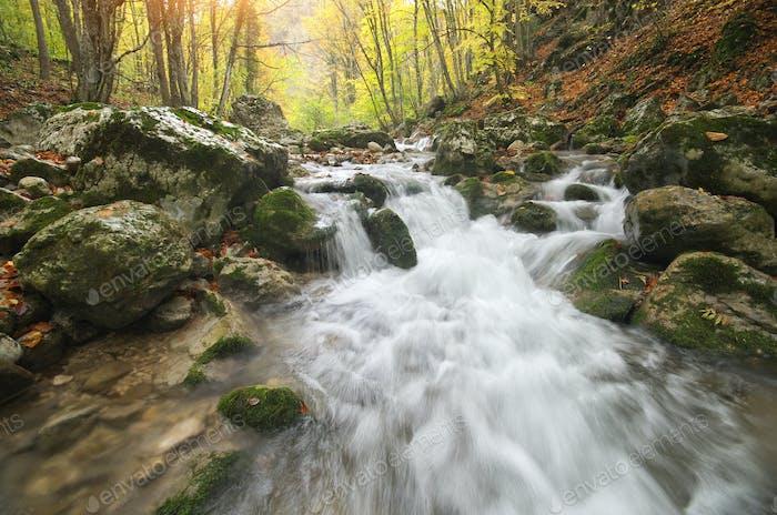 Herbstlandschaft Natur.