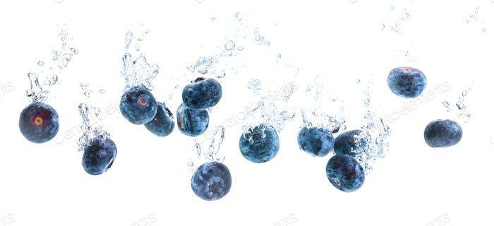 Panorama-Shooting von Blaubeeren sinken unter Wasser mit Luftblasen isoliert auf weißem Hintergrund