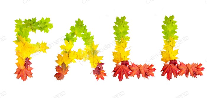 colorfully leaves in shape of word FALL on white background