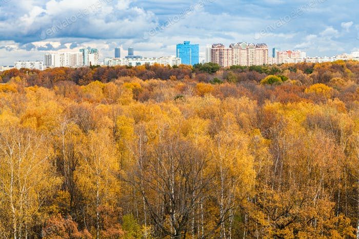 urban park and apartment houses in autumn
