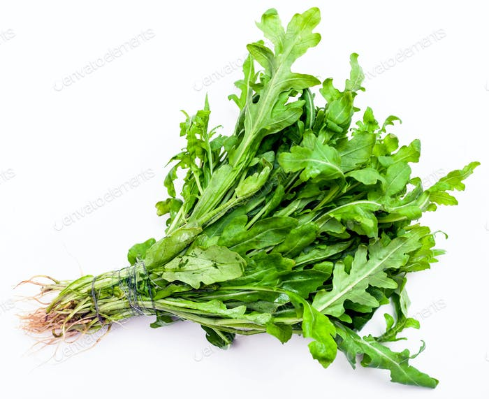 bunch of fresh cut green arugula herb on white