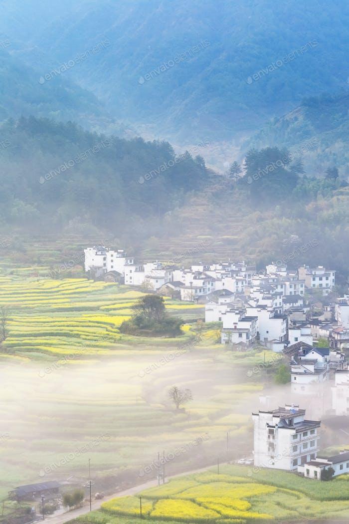 mountain village full of spring in wuyuan