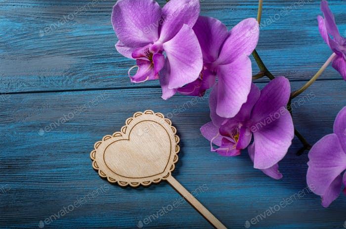 Purple Orchid and  heart