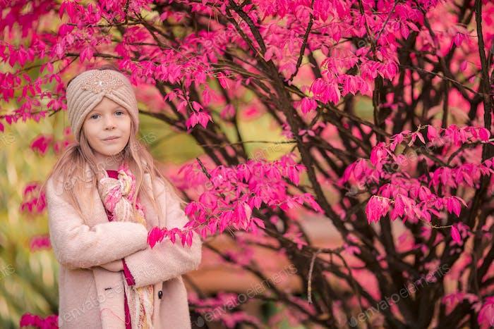 Liebenswert kleines Mädchen bei schönen Herbsttag im freien