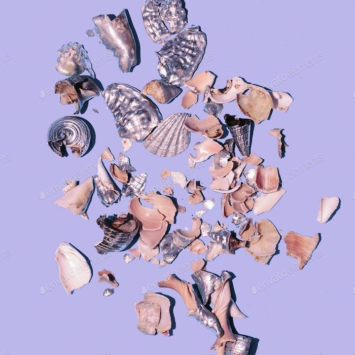 Broken shells background Minimal art design