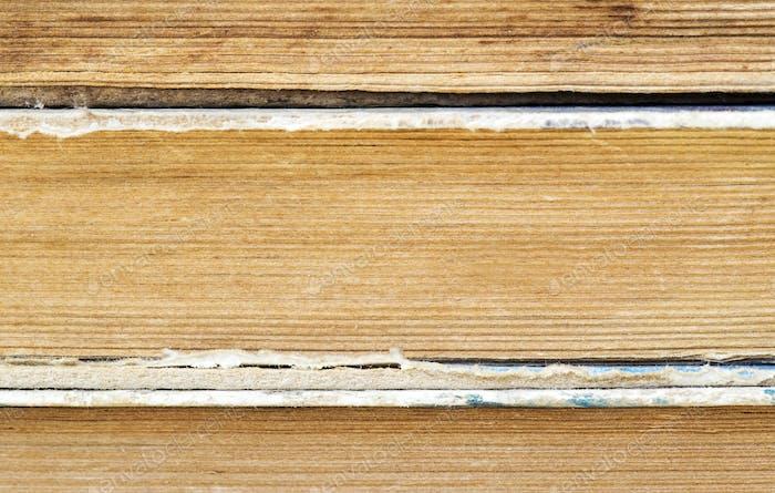 Old book details