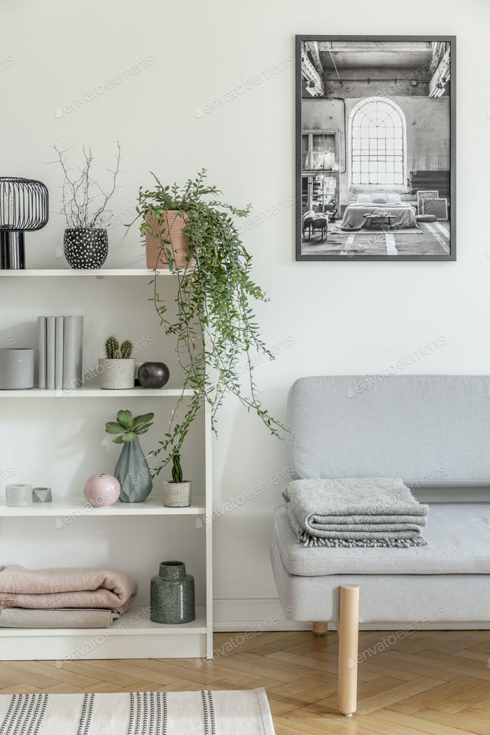 White wooden bookshelf with grey plant, books and vases next to grey sofa with blanket