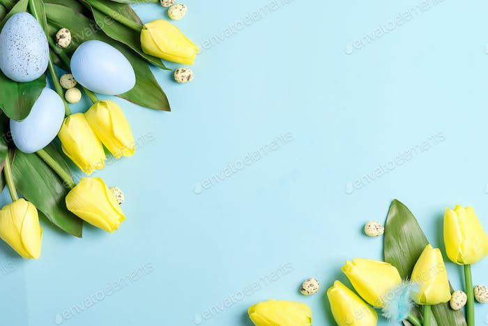 Easter Eggs in box with tulips on blue background with copy space. Easter background or easter