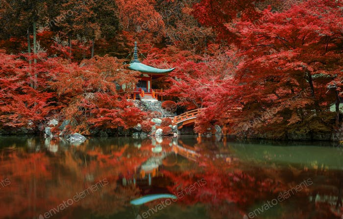 autumn foliage at Daigo ji temple, Kyoto, Japan
