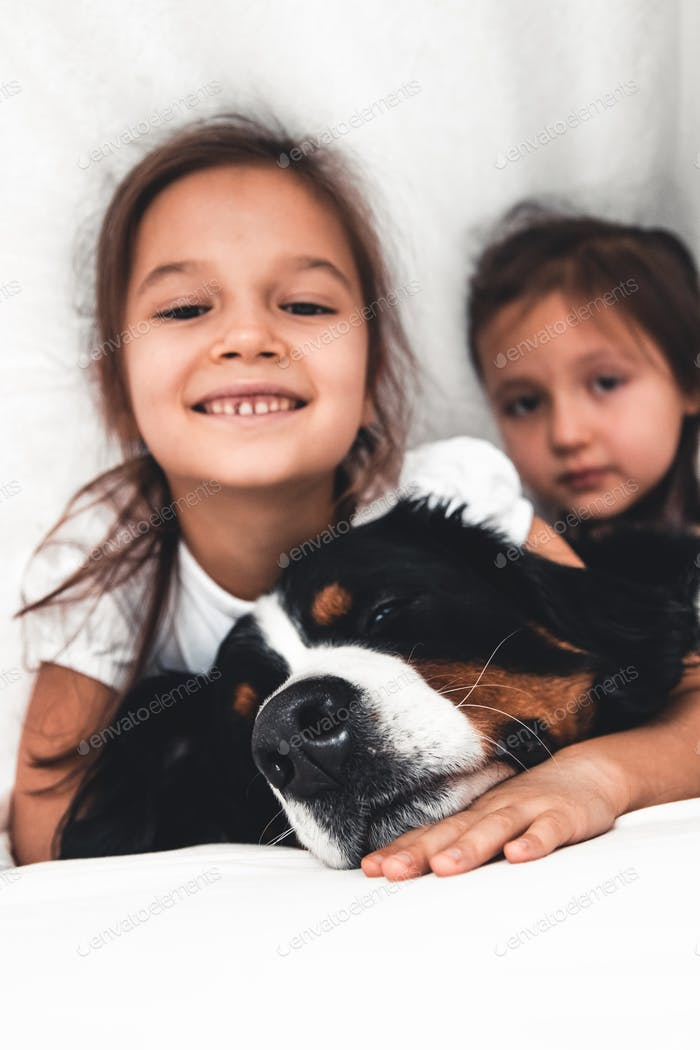 little girls in bed with dog Bernese Mountain Dog, friendship