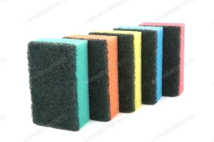 sponge for washing