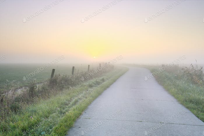 road to sun at sunrise