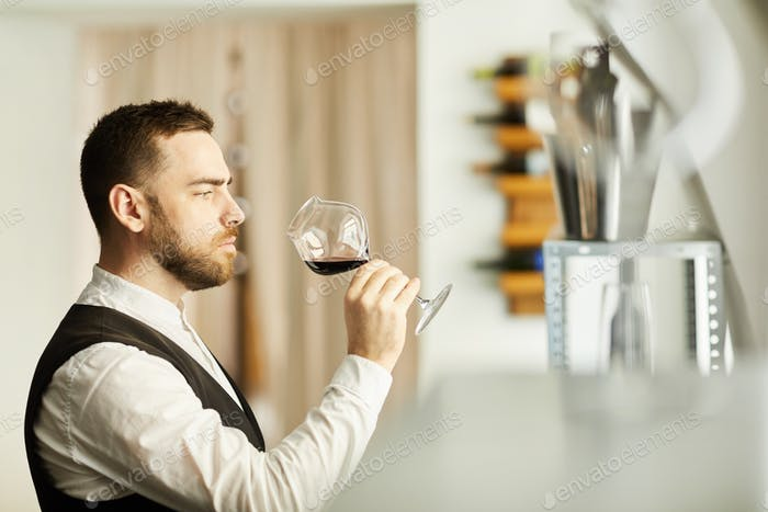 Sommelier Holding Wine Glass