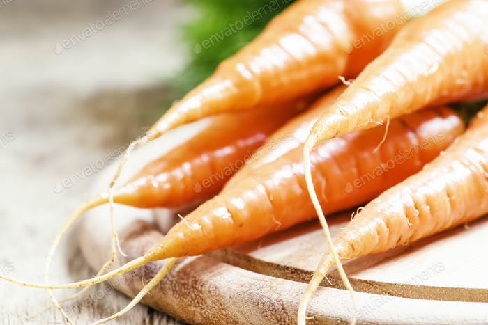 Fresh carrots, shallow depth of field