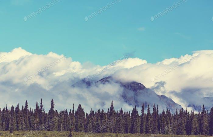 Berge auf Alaska