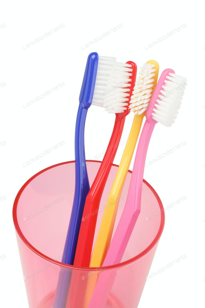 Toothbrushes In Plastic Container