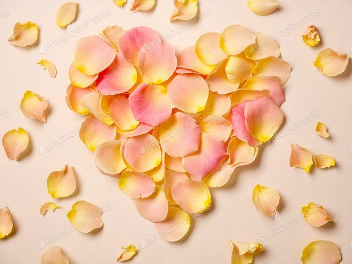 pink rose petals on beige paper background