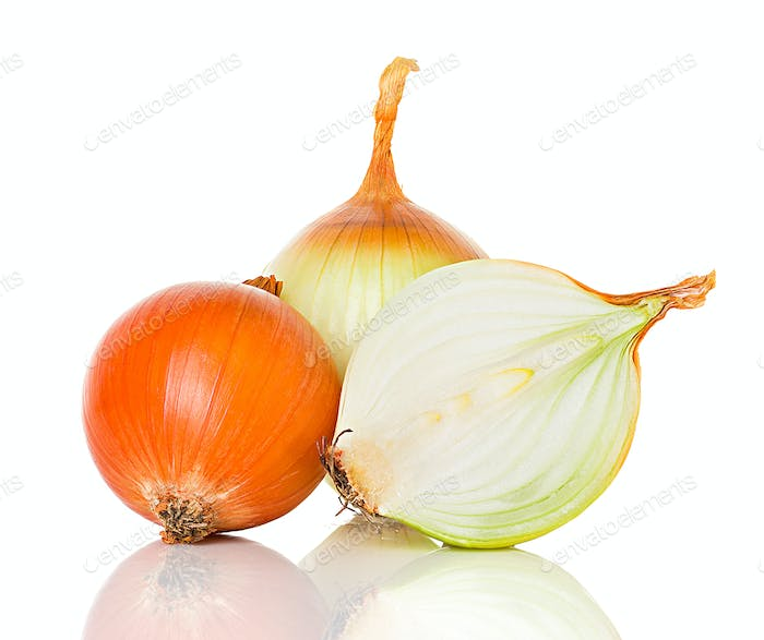 onions isolated