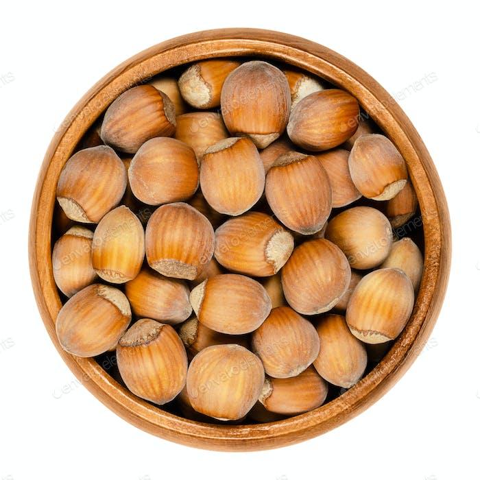 Unshelled ripe hazelnuts in wooden bowl