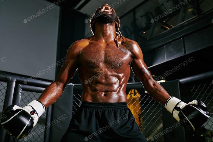 Sweaty boxer shouting loud