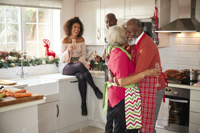 Multi-ethnic adult family celebrating  with champagne