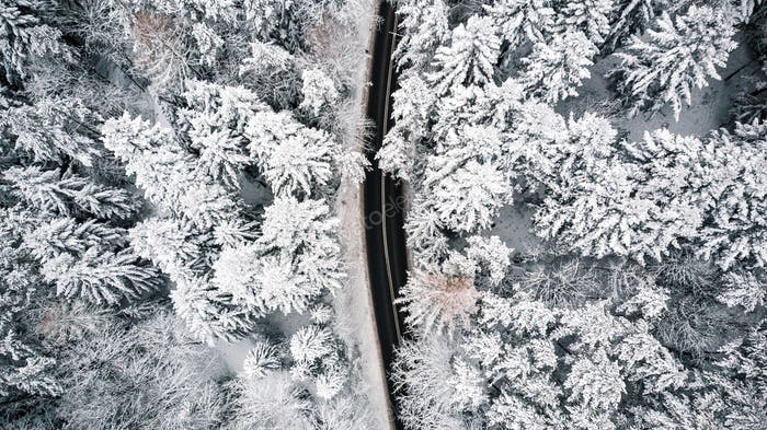 Curvy road line in winter scenery, aerial view