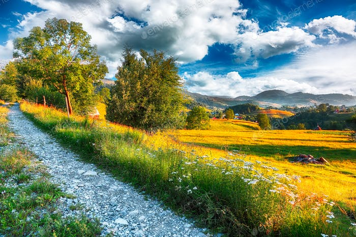 Majestic countryside landscape with forested hills and grassy meadows in mountains