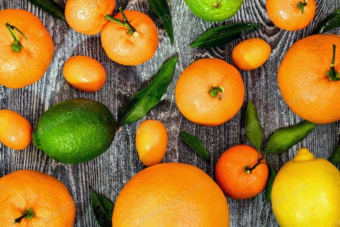Close-up of various citrus fruits. Top view