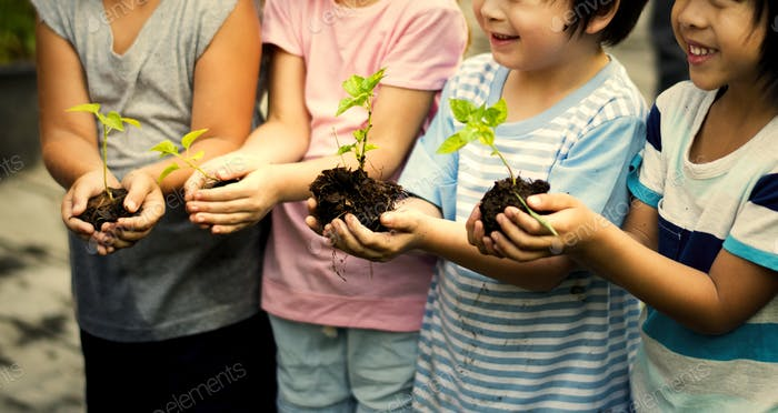 Group of kindergarten kids friends gardening agriculture