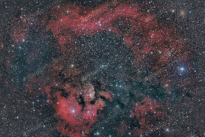 NGC7822  emission nebula in constellation Cepheus