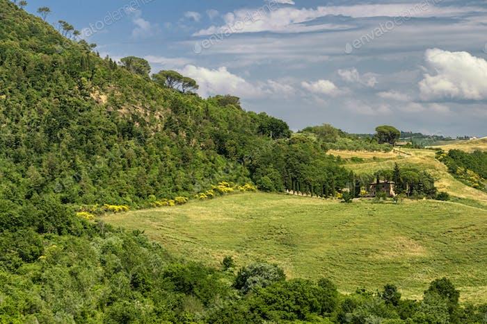 Summer landscape in Tuscany near Volterra