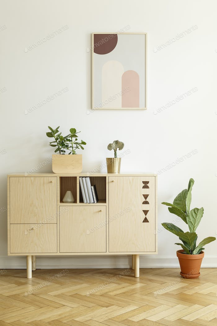 Plant next to wooden cupboard against white wall with poster in