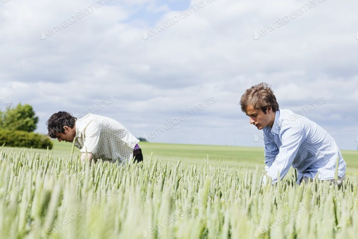 Friends searching in field against cloudy sky