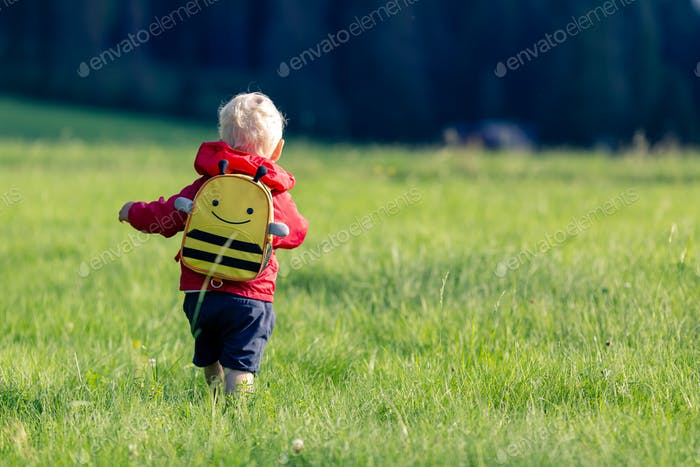 Baby boy hiking with backpack on green meadow