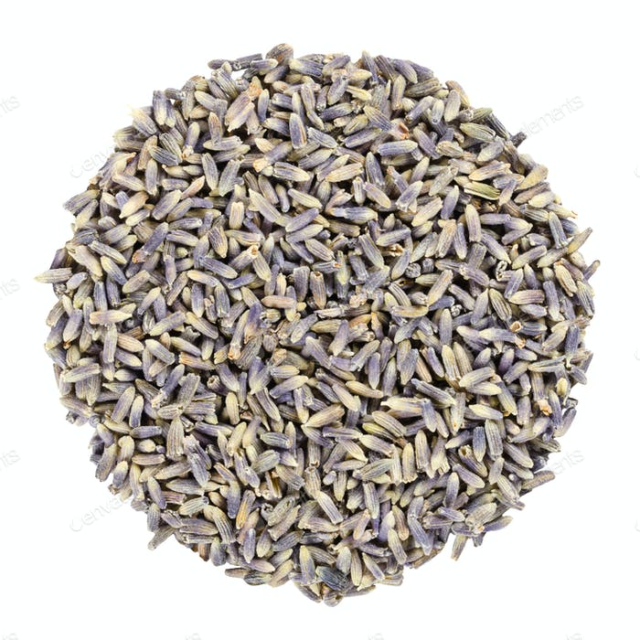 Dried lavender blossoms, herb circle from above, over white