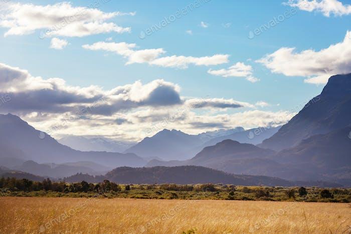Feld in Argentinien