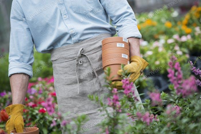 Bio Blumenpflanze Gärtnerei. Ein Mann, der Blumentöpfe trägt.
