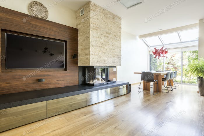Television and fireplace