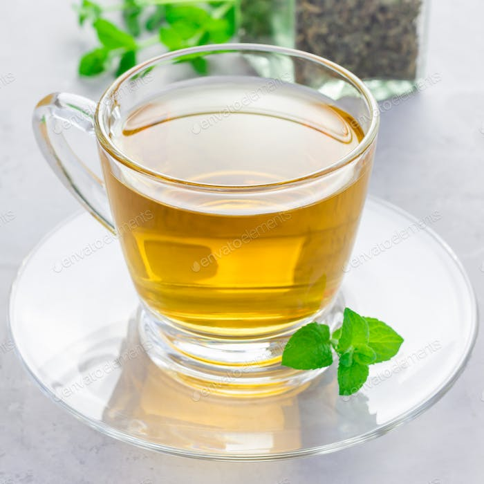 Herbal mint tea in glass cup with fresh peppermint on background, square format
